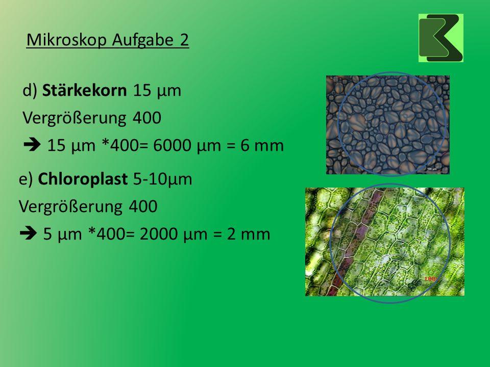 Mikroskop Aufgabe 2 d) Stärkekorn 15 µm Vergrößerung 400 15 µm *400= 6000 µm = 6 mm e) Chloroplast 5-10µm Vergrößerung 400 5 µm *400= 2000 µm = 2 mm