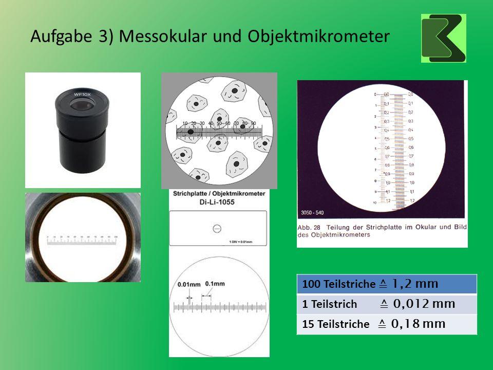 Aufgabe 3) Messokular und Objektmikrometer 100 Teilstriche 1,2 mm 1 Teilstrich 0,012 mm 15 Teilstriche 0,18 mm