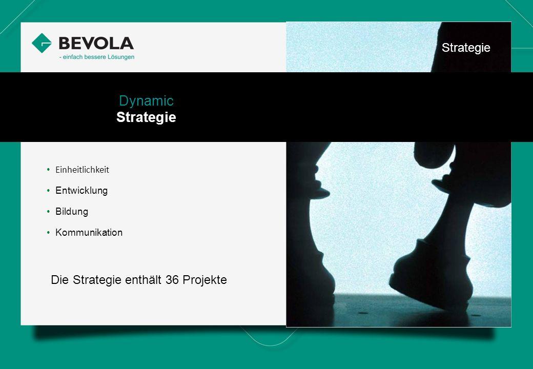 History Einheitlichkeit Entwicklung Bildung Kommunikation Dynamic Strategie Die Strategie enthält 36 Projekte