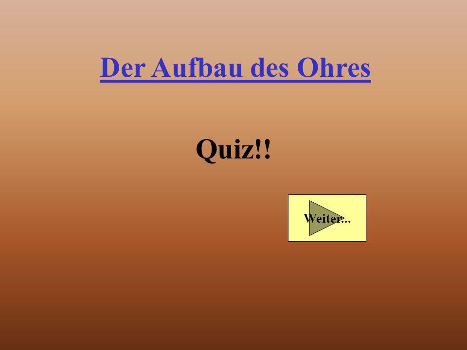 Der Aufbau des Ohres Quiz!! Weiter...