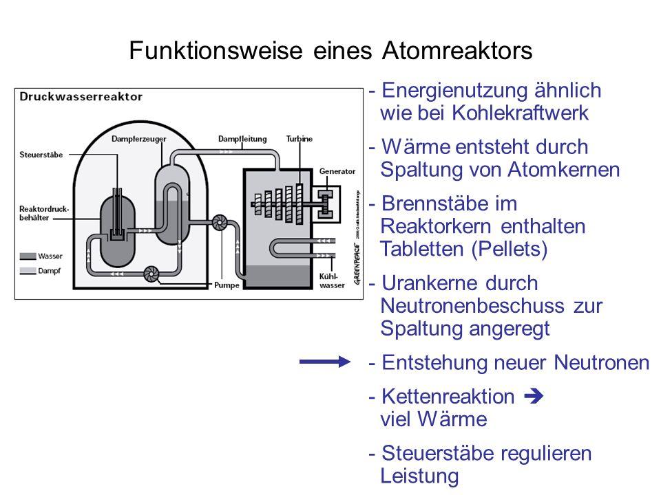 Funktionsweise eines Atomreaktors - Energienutzung ähnlich wie bei Kohlekraftwerk - Wärme entsteht durch Spaltung von Atomkernen - Brennstäbe im Reakt