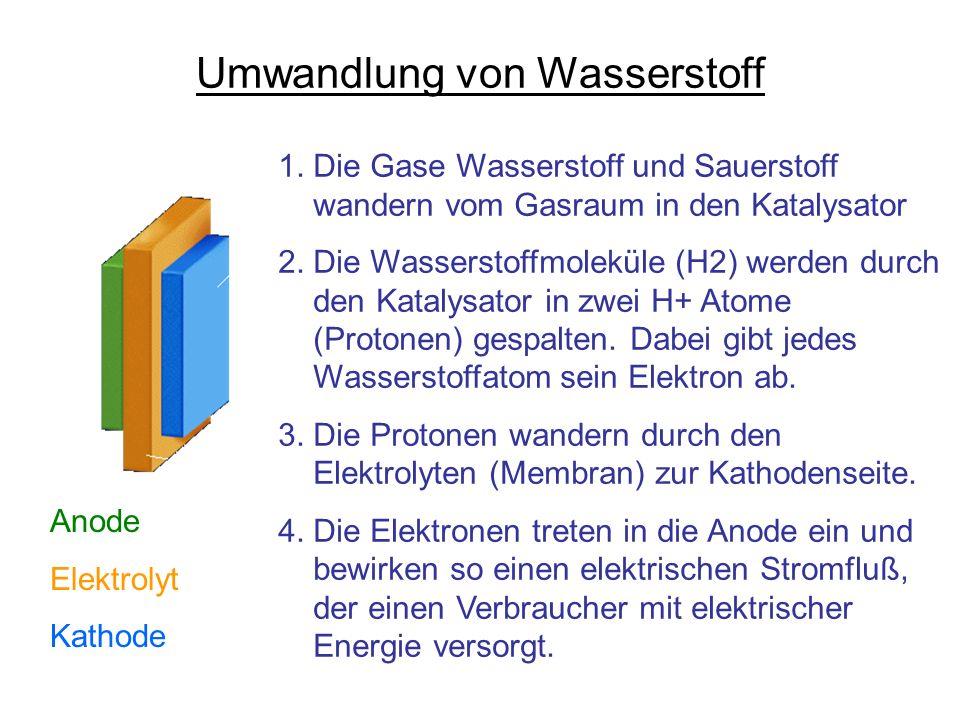 Umwandlung von Wasserstoff 1. Die Gase Wasserstoff und Sauerstoff wandern vom Gasraum in den Katalysator 2. Die Wasserstoffmoleküle (H2) werden durch