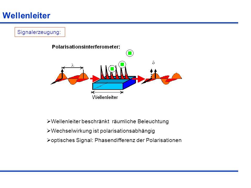 Interferenzmuster Signalverarbeitung