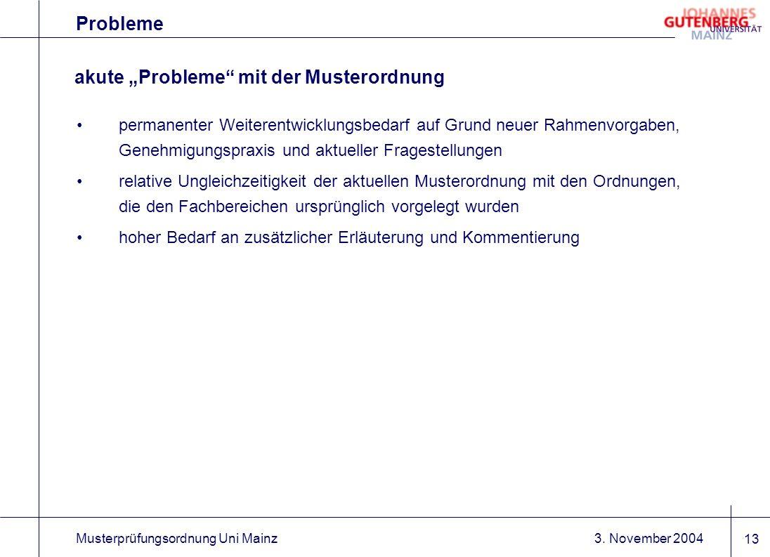 3. November 2004Musterprüfungsordnung Uni Mainz 13 Probleme akute Probleme mit der Musterordnung permanenter Weiterentwicklungsbedarf auf Grund neuer