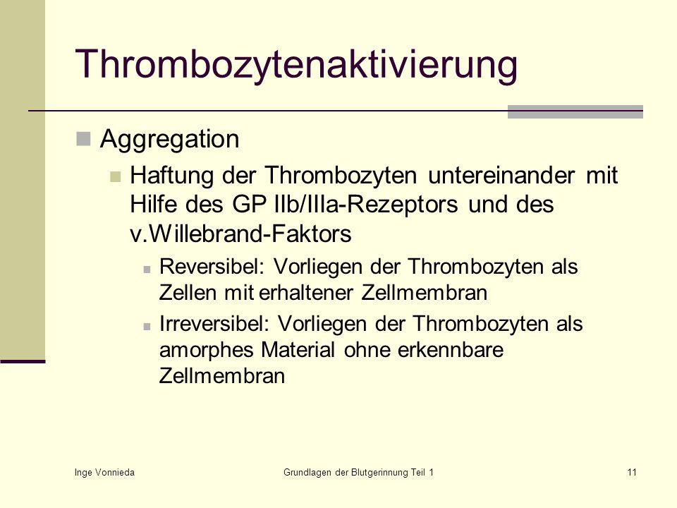 Inge Vonnieda Grundlagen der Blutgerinnung Teil 111 Thrombozytenaktivierung Aggregation Haftung der Thrombozyten untereinander mit Hilfe des GP IIb/II