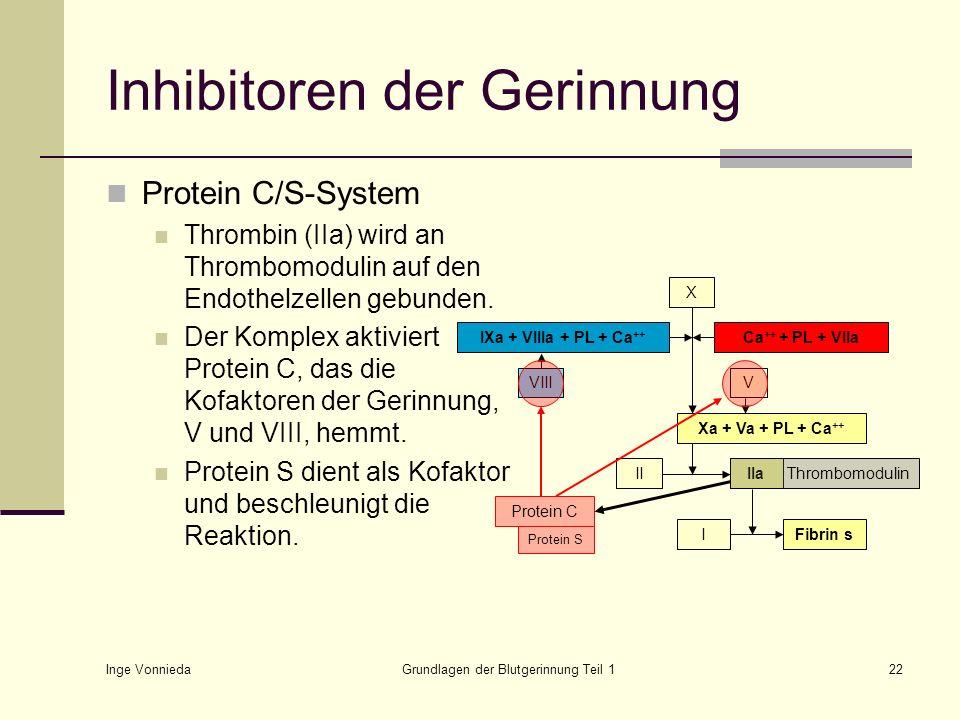 Inge Vonnieda Grundlagen der Blutgerinnung Teil 122 Protein C/S-System Thrombin (IIa) wird an Thrombomodulin auf den Endothelzellen gebunden. Der Komp
