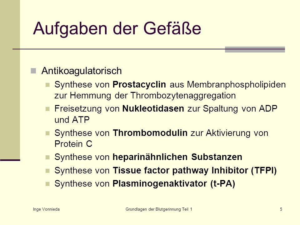 Inge Vonnieda Grundlagen der Blutgerinnung Teil 126 Revidierte Gerinnungstheorie Verletzung IX IXa + VIIIa + PL + Ca ++ X II Thrombin Gewebsthromboplastin, (Tissue factor TF) VIICa ++ + TF + VIIa Xa + Va + PL + Ca ++ XI XIa VIII V Fibrinogen Fibrin löslich XIIIa Fibrin unlöslich XIII Thrombozyten TFPI Protein C/S Antithrombin III