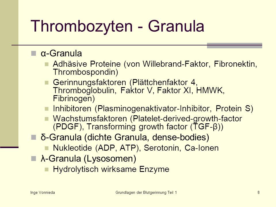 Inge Vonnieda Grundlagen der Blutgerinnung Teil 19 Thrombozyten - Membran Membran Phospholipide Bildung von Thromboxan A 2 aus Arachidonsäure Plättchenfaktor 3 zur Aktivierung der plasmatischen Gerinnung Kanälchen zum Substanzaustausch Glykoproteine als Rezeptoren (z.B.