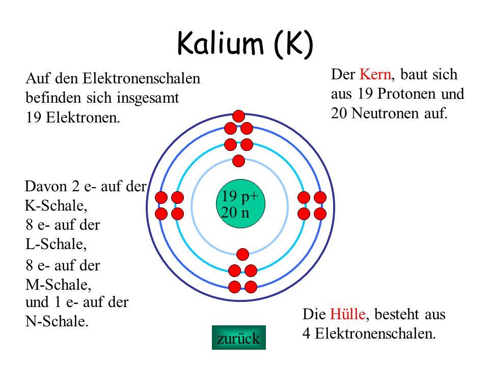 Kalium (K) 19 p+ 20 n Der Kern, baut sich aus 19 Protonen Die Hülle, besteht aus 4 Elektronenschalen. Auf den Elektronenschalen befinden sich insgesam