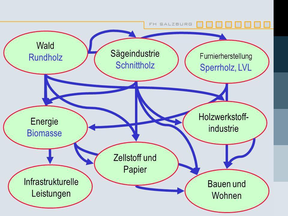 fh salzburg Wald Rundholz Infrastrukturelle Leistungen Bauen und Wohnen Furnierherstellung Sperrholz, LVL Sägeindustrie Schnittholz Holzwerkstoff- industrie Energie Biomasse Zellstoff und Papier