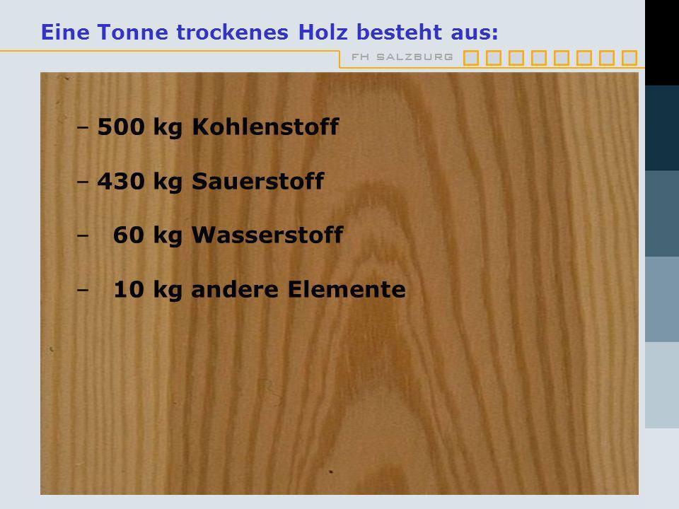 fh salzburg Eine Tonne trockenes Holz besteht aus: –500 kg Kohlenstoff –430 kg Sauerstoff – 60 kg Wasserstoff – 10 kg andere Elemente