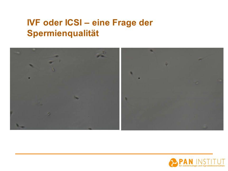 IVF oder ICSI – eine Frage der Spermienqualität
