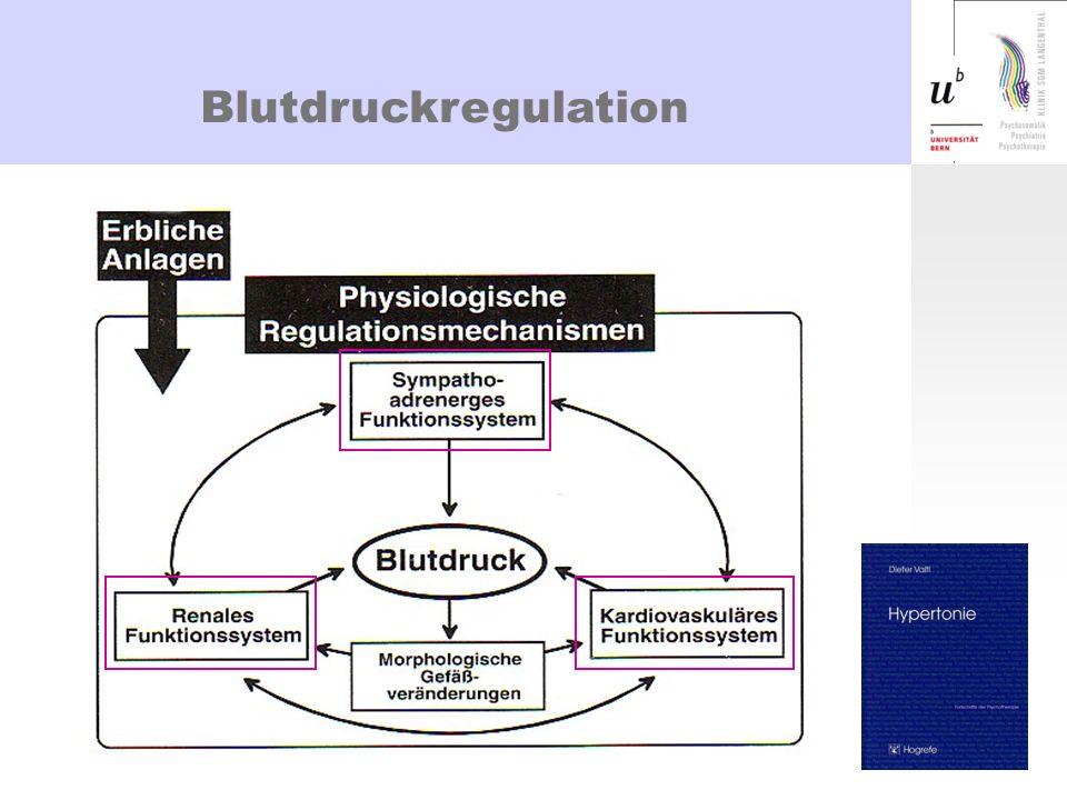 Kardiovaskuläres System BD = HZV X TPW Barorezeptoren - Sensitivität Barorezeptoren-Reflex Sympathikussteigerung erhöht HF (HZV) und TPV Parallel dazu Abnahme der parasympathischen Aktivität im Sinn einer Verschiebung der autonomen Balance Sensitivität der adrenergen Rezeptoren Kurzfristige Regulation Stress
