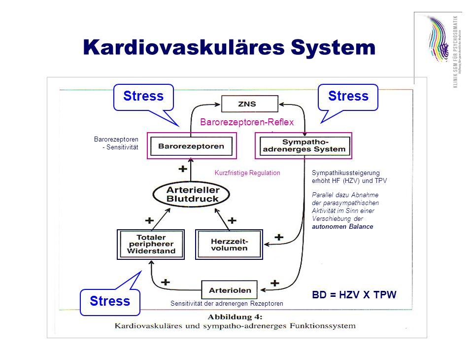 Renales System Hormonelle Einflüsse Volumenregulation Veränderung der Viskosität (längerzeitig) Stress
