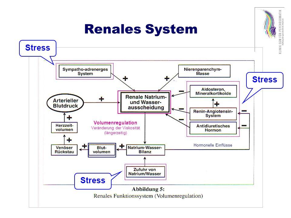 Vaskuläres Remodeling Schiffrin et al., 2001 Stress