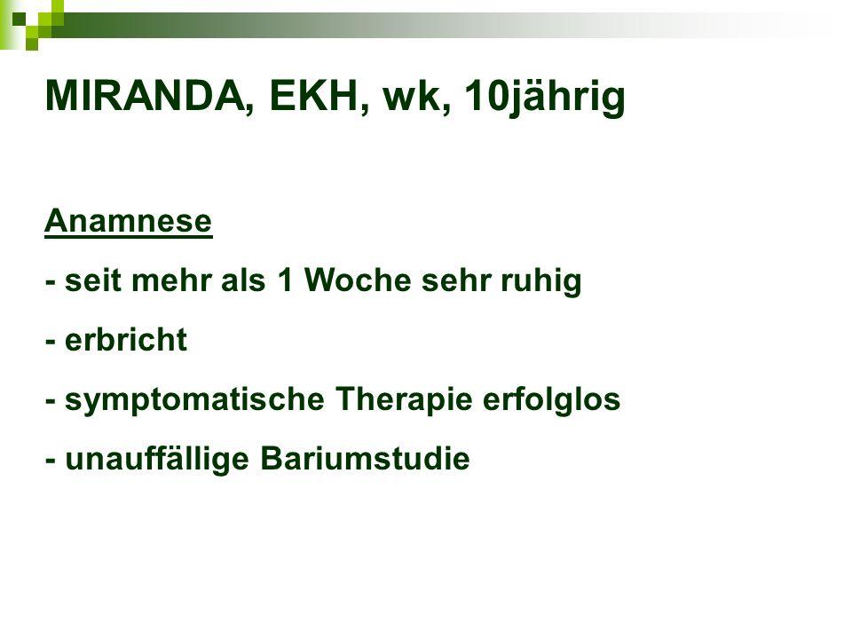 MIRANDA, EKH, wk, 10jährig Anamnese - seit mehr als 1 Woche sehr ruhig - erbricht - symptomatische Therapie erfolglos - unauffällige Bariumstudie