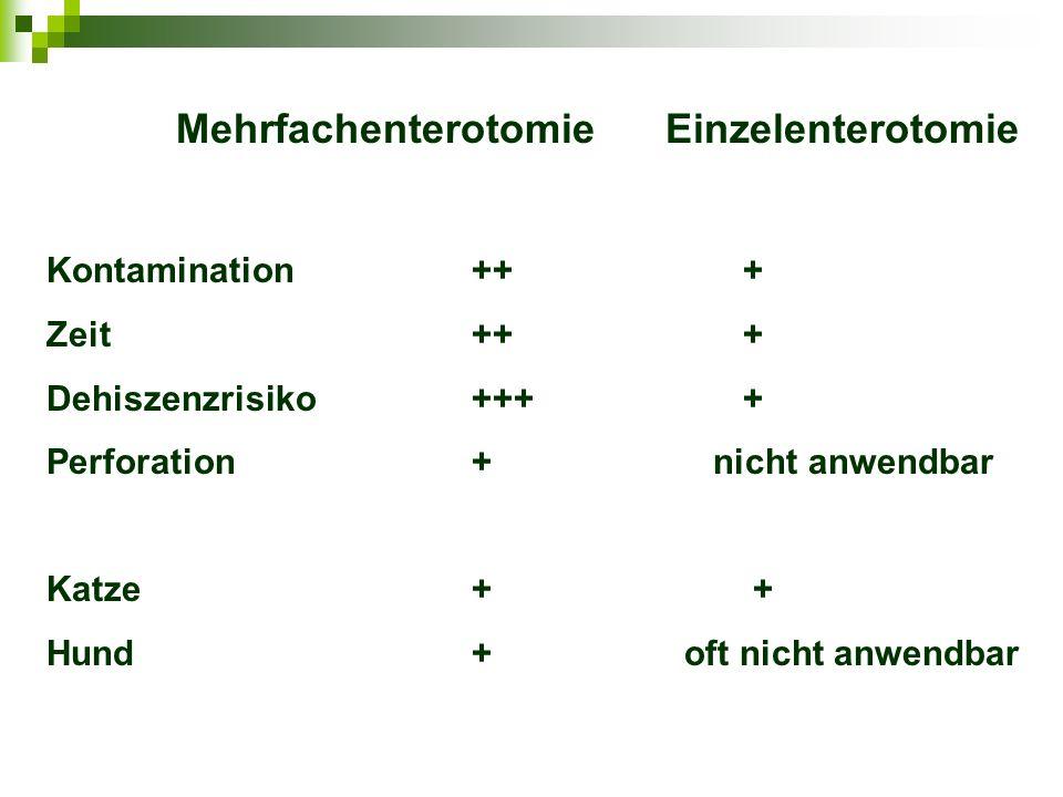 Mehrfachenterotomie Einzelenterotomie Kontamination++ + Zeit++ + Dehiszenzrisiko+++ + Perforation+ nicht anwendbar Katze+ + Hund+oft nicht anwendbar