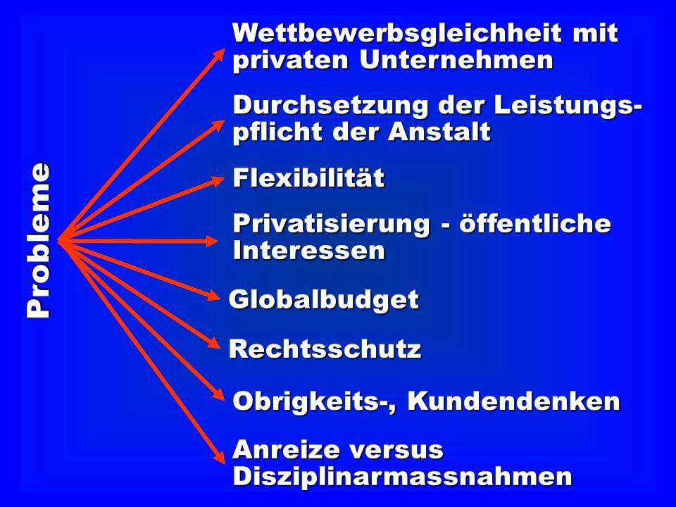 Durchsetzung der Leistungs- pflicht der Anstalt Wettbewerbsgleichheit mit privaten Unternehmen Privatisierung - öffentliche Interessen Globalbudget Re