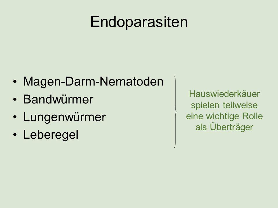 Endoparasiten Magen-Darm-Nematoden Bandwürmer Lungenwürmer Leberegel Hauswiederkäuer spielen teilweise eine wichtige Rolle als Überträger