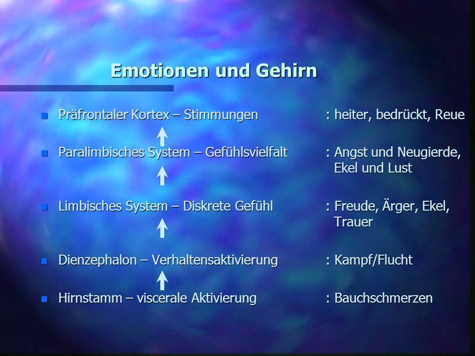 Emotionen und Gehirn n Präfrontaler Kortex – Stimmungen: heiter, bedrückt, Reue n Paralimbisches System – Gefühlsvielfalt : Angst und Neugierde, Ekel