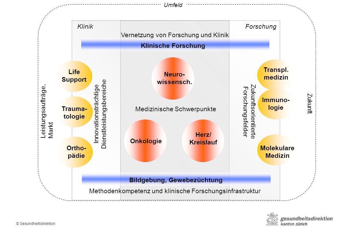 © Gesundheitsdirektion Gesamtstrategie HSM: Regierungsrat Zürich, Klausur 17/18.