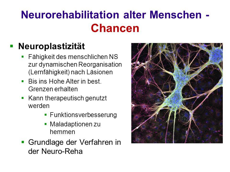 Neurorehabilitation alter Menschen - Chancen Neuroplastizität Fähigkeit des menschlichen NS zur dynamischen Reorganisation (Lernfähigkeit) nach Läsionen Bis ins Hohe Alter in best.