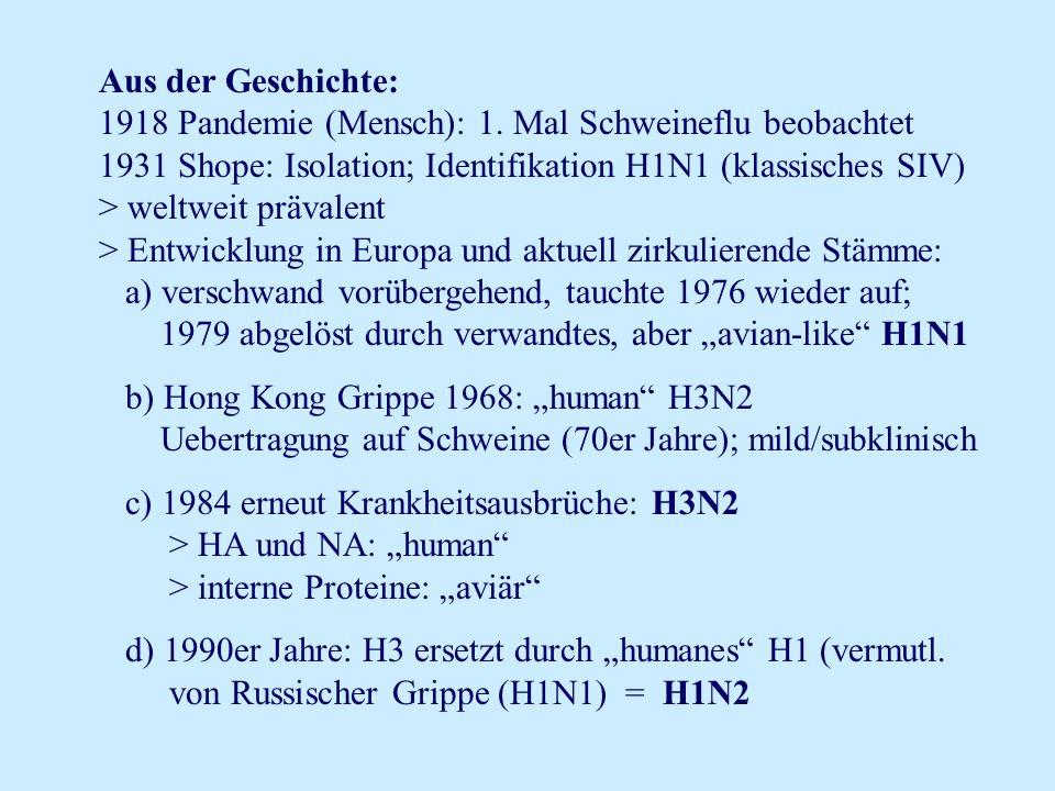 Aus der Geschichte: 1918 Pandemie (Mensch): 1. Mal Schweineflu beobachtet 1931 Shope: Isolation; Identifikation H1N1 (klassisches SIV) > weltweit präv