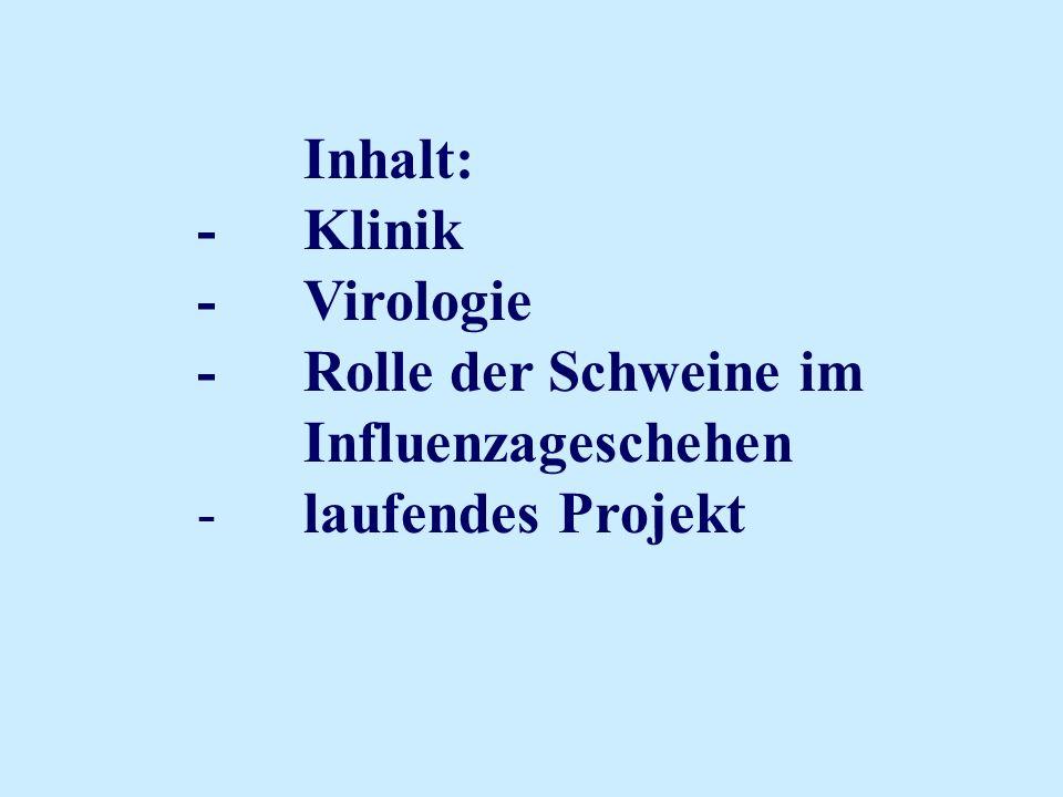 Inhalt: -Klinik -Virologie -Rolle der Schweine im Influenzageschehen -laufendes Projekt