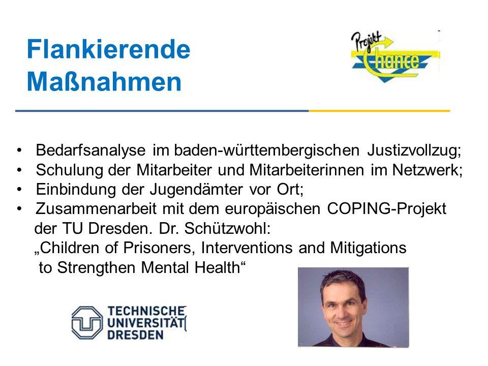 Flankierende Maßnahmen Bedarfsanalyse im baden-württembergischen Justizvollzug; Schulung der Mitarbeiter und Mitarbeiterinnen im Netzwerk; Einbindung