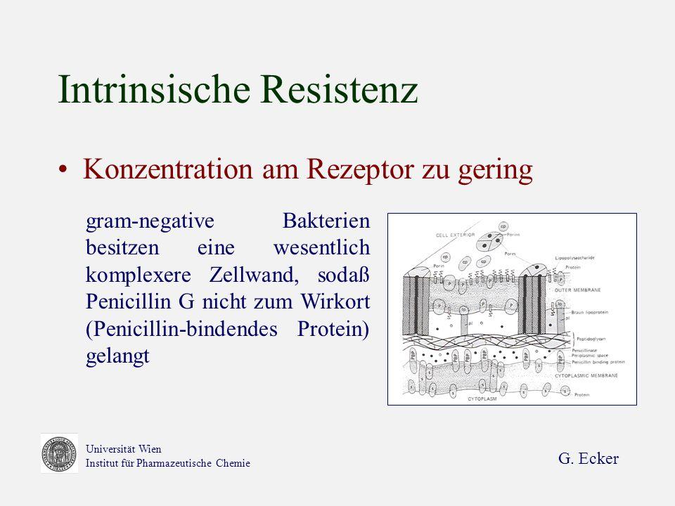 G. Ecker Universität Wien Institut für Pharmazeutische Chemie Intrinsische Resistenz Konzentration am Rezeptor zu gering gram-negative Bakterien besit