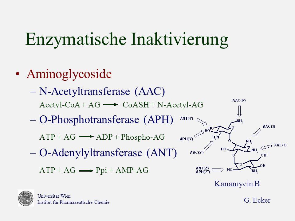 G. Ecker Universität Wien Institut für Pharmazeutische Chemie Enzymatische Inaktivierung Aminoglycoside –N-Acetyltransferase (AAC) Acetyl-CoA + AG CoA