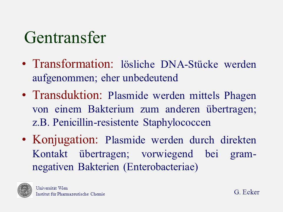 G. Ecker Universität Wien Institut für Pharmazeutische Chemie Gentransfer Transformation: lösliche DNA-Stücke werden aufgenommen; eher unbedeutend Tra