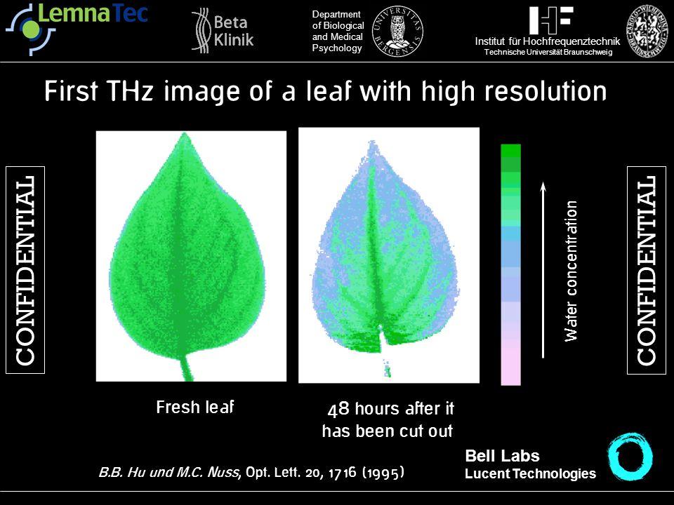 Institut für Hochfrequenztechnik Technische Universität Braunschweig Department of Biological and Medical Psychology Water concentration Fresh leaf 48