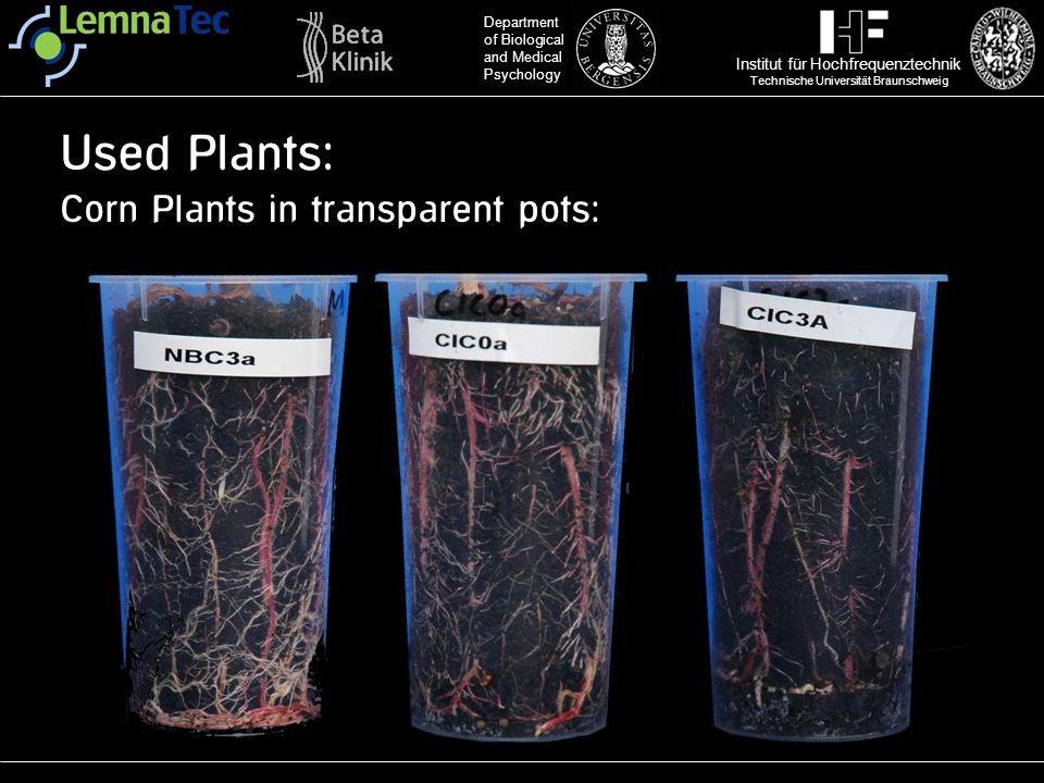 Institut für Hochfrequenztechnik Technische Universität Braunschweig Department of Biological and Medical Psychology Used Plants: Corn Plants in trans