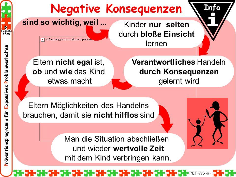 Präventionsprogramm für Expansives Problemverhalten Hogrefe 2005 © PEP-WS 108 Negative Konsequenzen sind so wichtig, weil... Man die Situation abschli