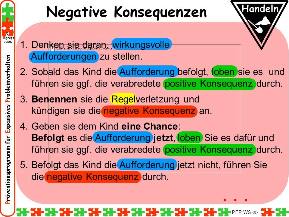 Präventionsprogramm für Expansives Problemverhalten Hogrefe 2005 © PEP-WS 113 Negative Konsequenzen Handeln 1. Denken sie daran, wirkungsvolle Aufford