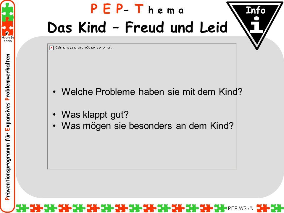 Präventionsprogramm für Expansives Problemverhalten Hogrefe 2005 © PEP-WS 12 Welche Probleme haben sie mit dem Kind? Was klappt gut? Was mögen sie bes