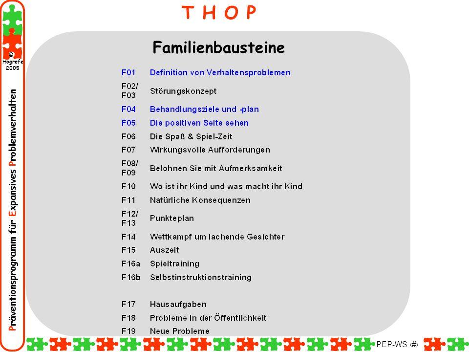 Präventionsprogramm für Expansives Problemverhalten Hogrefe 2005 © PEP-WS 13 T H O P Familienbausteine