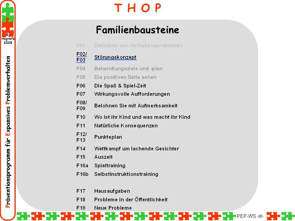 Präventionsprogramm für Expansives Problemverhalten Hogrefe 2005 © PEP-WS 34 T H O P Familienbausteine