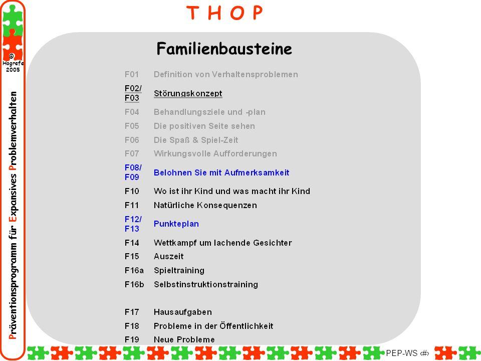 Präventionsprogramm für Expansives Problemverhalten Hogrefe 2005 © PEP-WS 79 T H O P Familienbausteine