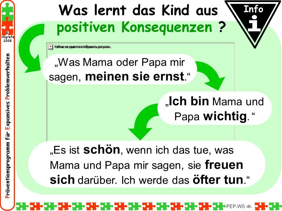 Präventionsprogramm für Expansives Problemverhalten Hogrefe 2005 © PEP-WS 92 Was lernt das Kind aus positiven Konsequenzen ? Es ist schön, wenn ich da