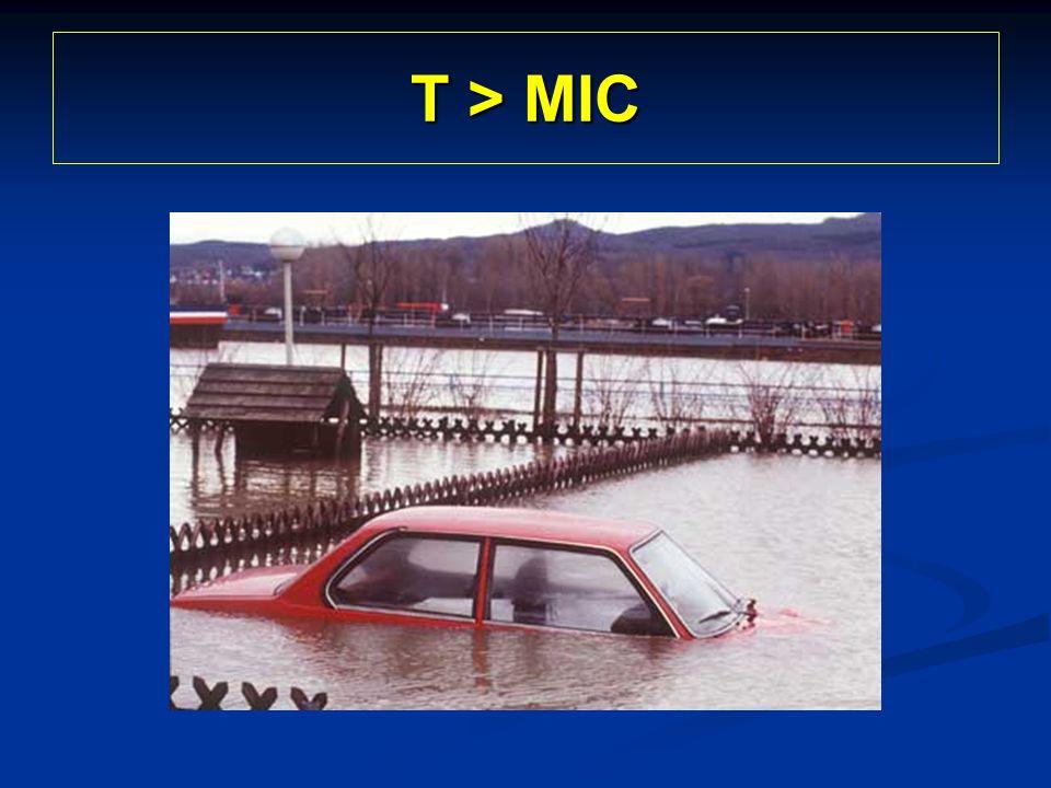 T > MIC