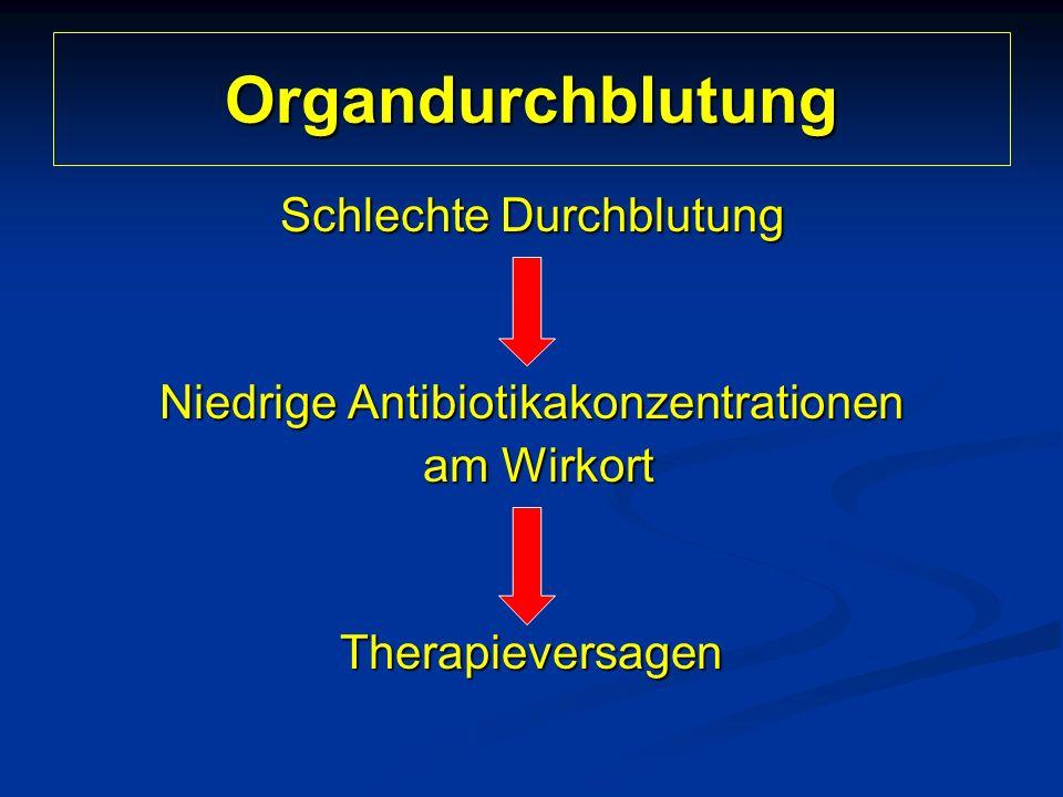 Organdurchblutung Schlechte Durchblutung Niedrige Antibiotikakonzentrationen am Wirkort am WirkortTherapieversagen