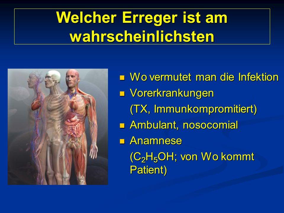 Welcher Erreger ist am wahrscheinlichsten Wo vermutet man die Infektion Wo vermutet man die Infektion Vorerkrankungen Vorerkrankungen (TX, Immunkompromitiert) Ambulant, nosocomial Ambulant, nosocomial Anamnese Anamnese (C 2 H 5 OH; von Wo kommt Patient)