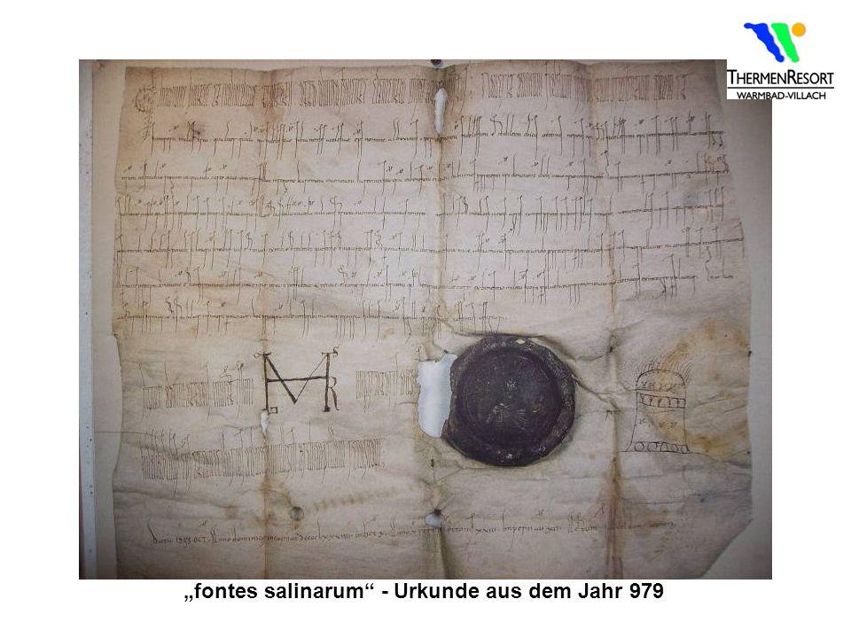 fontes salinarum - Urkunde aus dem Jahr 979