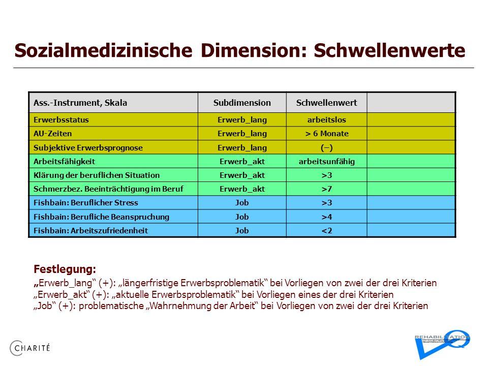 Sozialmedizinische Dimension: Schwellenwerte Ass.-Instrument, SkalaSubdimensionSchwellenwert ErwerbsstatusErwerb_langarbeitslos AU-ZeitenErwerb_lang>