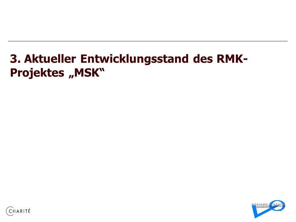 3. Aktueller Entwicklungsstand des RMK- Projektes MSK
