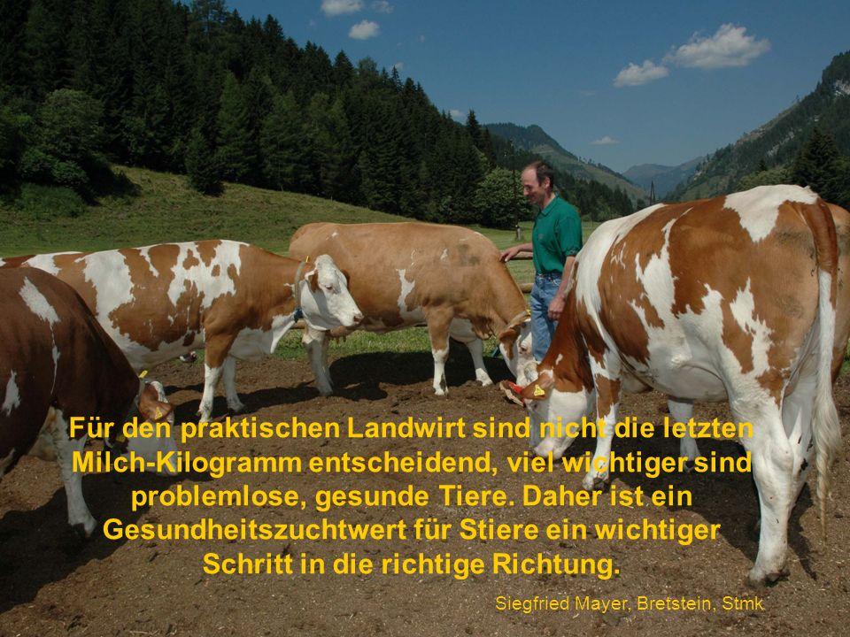 Für den praktischen Landwirt sind nicht die letzten Milch-Kilogramm entscheidend, viel wichtiger sind problemlose, gesunde Tiere. Daher ist ein Gesund
