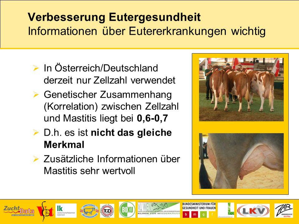 Verbesserung Eutergesundheit Informationen über Eutererkrankungen wichtig In Österreich/Deutschland derzeit nur Zellzahl verwendet Genetischer Zusamme