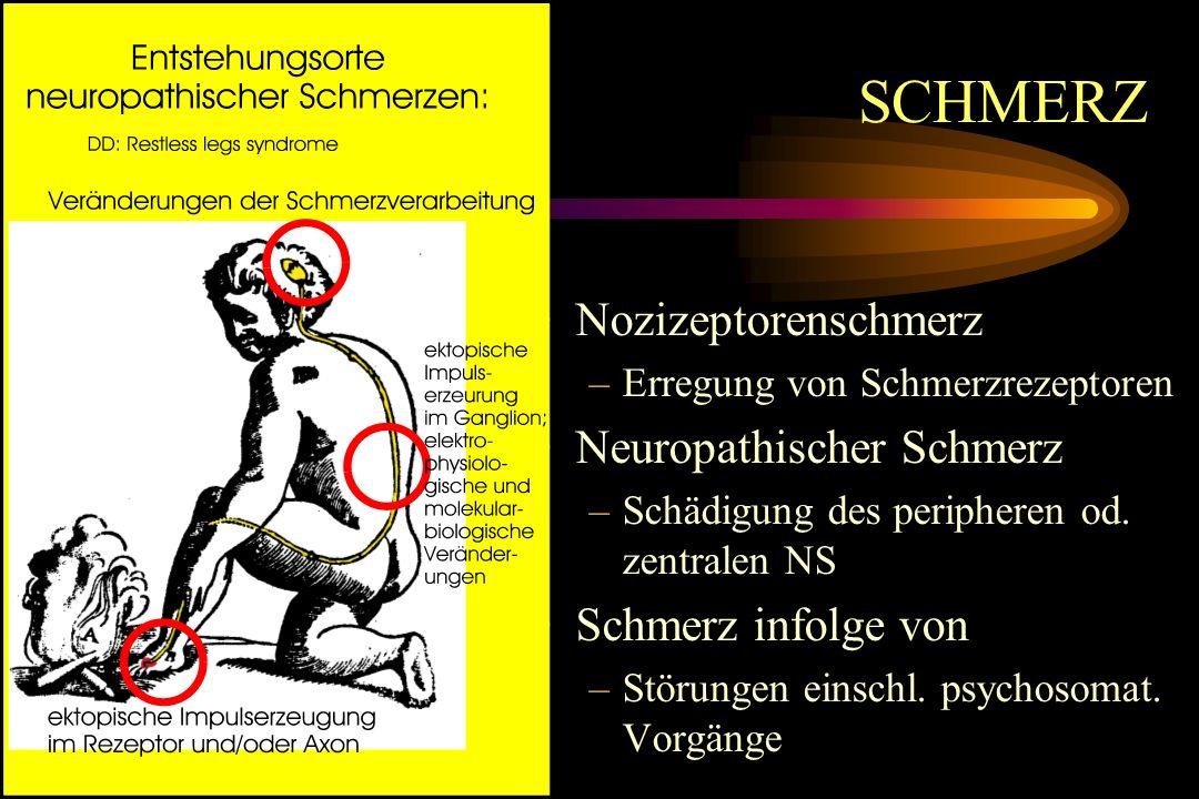 SCHMERZ Nozizeptorenschmerz –Erregung von Schmerzrezeptoren Neuropathischer Schmerz –Schädigung des peripheren od. zentralen NS Schmerz infolge von –S